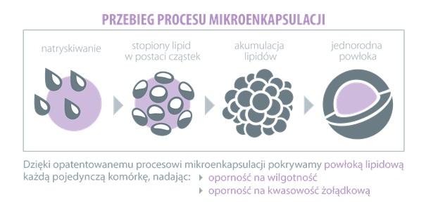 probiotyki-enkapsulacja